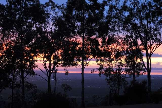 43 Pacific Vista Court, Ocean View QLD 4521