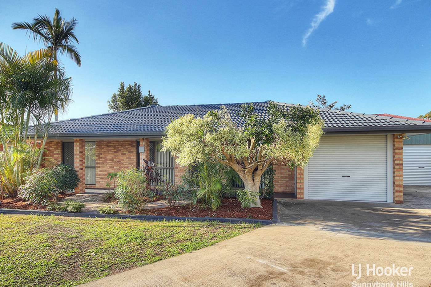 Main view of Homely house listing, 38 Amaranthus Street, Runcorn QLD 4113