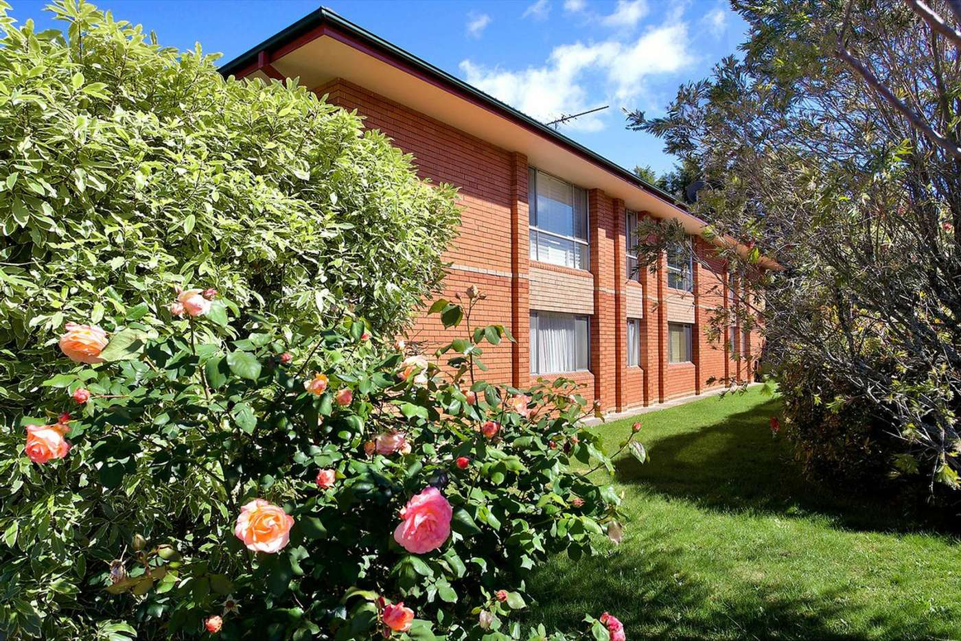 Main view of Homely flat listing, 6/37 Ada Street, Katoomba NSW 2780