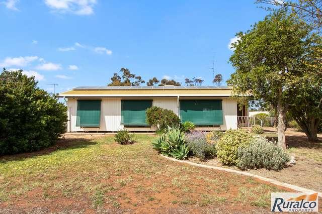 16 East Terrace, Brinkworth SA 5464