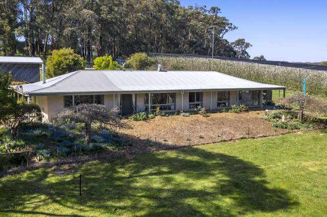 61-69 Prossors Lane, Red Hill VIC 3937