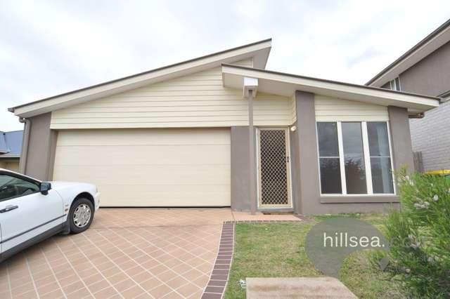 8 Silver Gull Street, Coomera QLD 4209