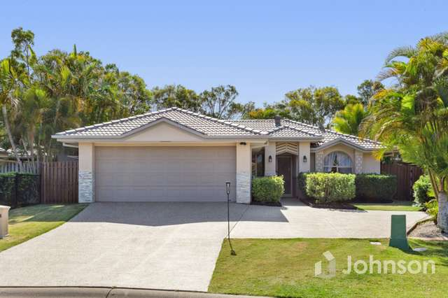 12 Elk Court, Upper Coomera QLD 4209