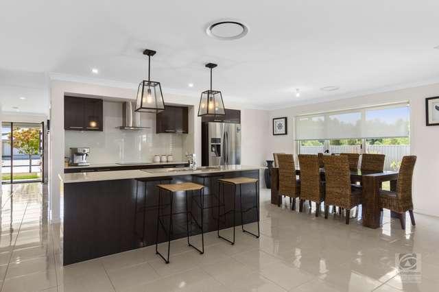 24 Silkpod Avenue, Murwillumbah NSW 2484