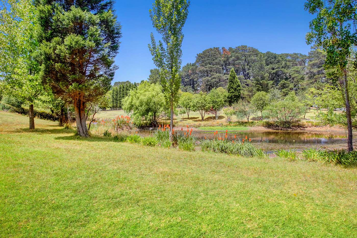 Sixth view of Homely residentialLand listing, 23 Phillip Street, Burradoo NSW 2576