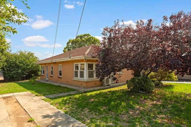 62 Australian Avenue, Clovelly Park SA 5042