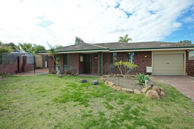 11 Rhagodia Court, Heathridge WA 6027