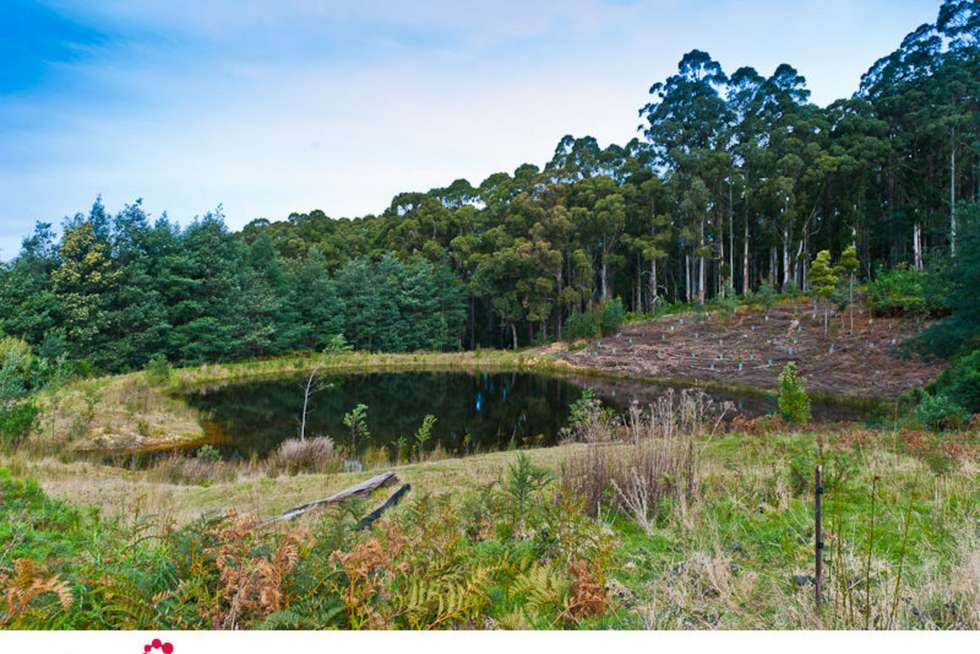Fourth view of Homely residentialLand listing, Lookout Road, Port Arthur TAS 7182