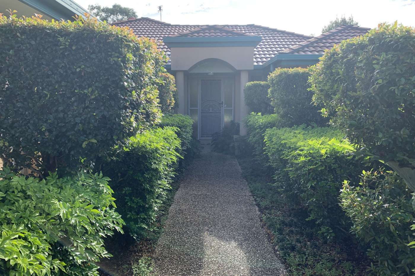Main view of Homely house listing, 23 Oakgrove Way, Sippy Downs QLD 4556