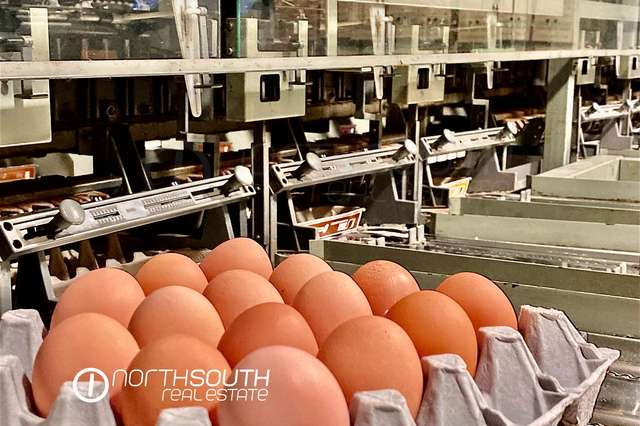 Jacobs Well EGG FARM FOR SALE, Norwell QLD 4208