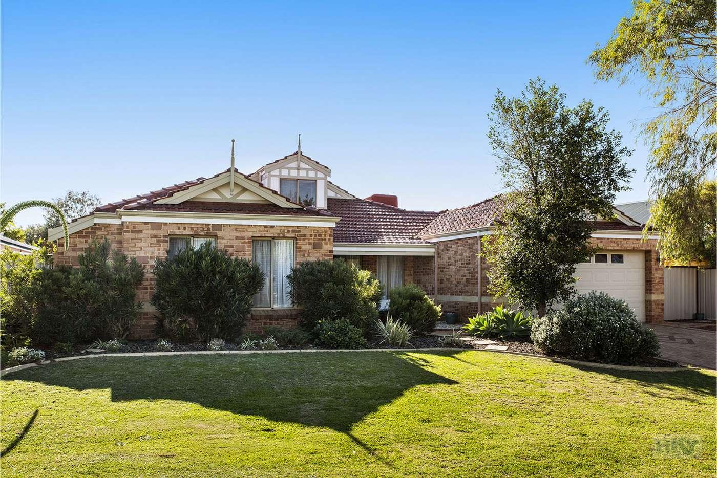 Main view of Homely house listing, 41 Ambassador Drive, Currambine WA 6028