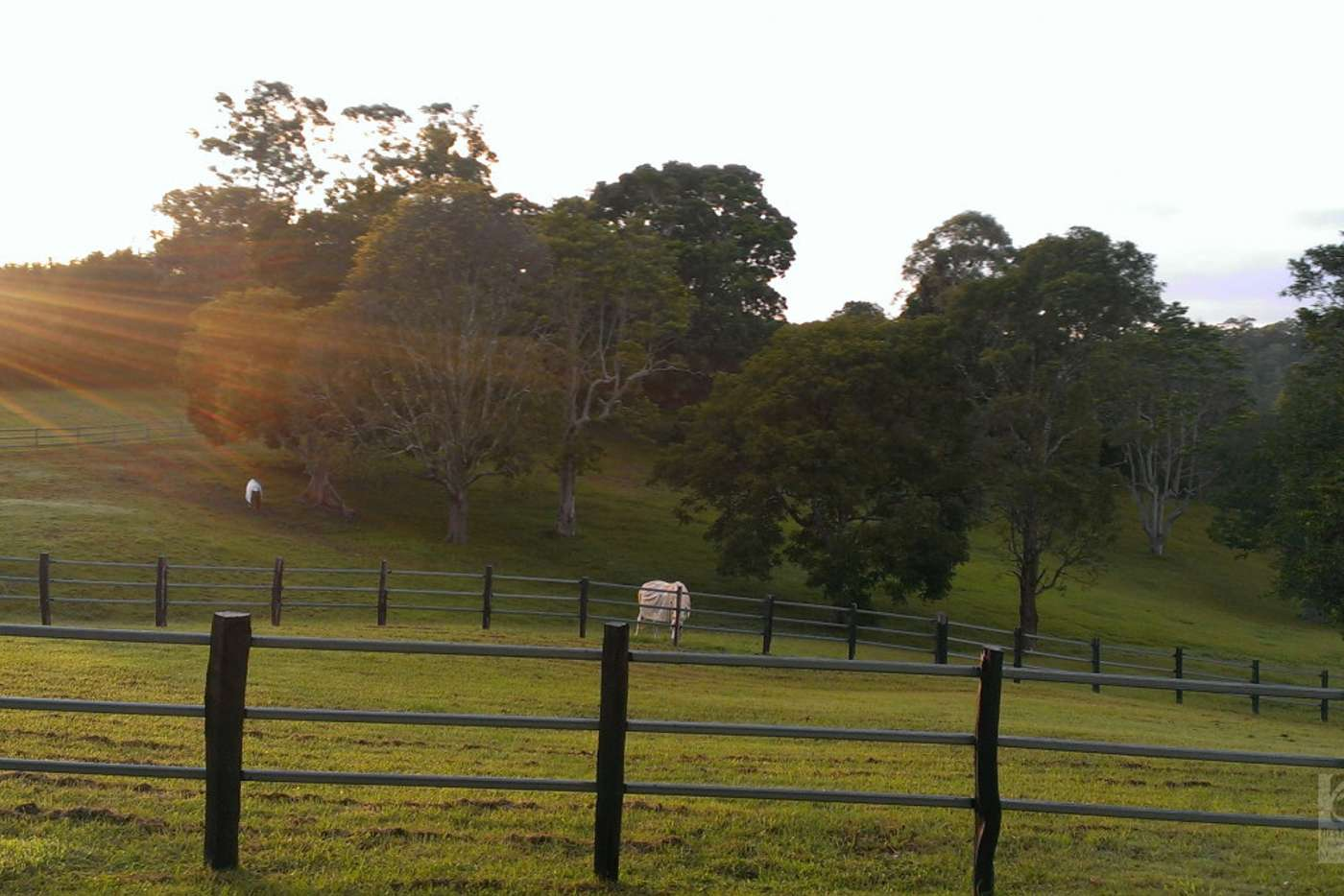Sixth view of Homely acreageSemiRural listing, 205 Upper Duroby Creek Road, Upper Duroby NSW 2486