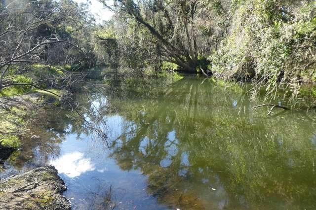 LOT 20 Cheviot Hills Road, Drake NSW 2469