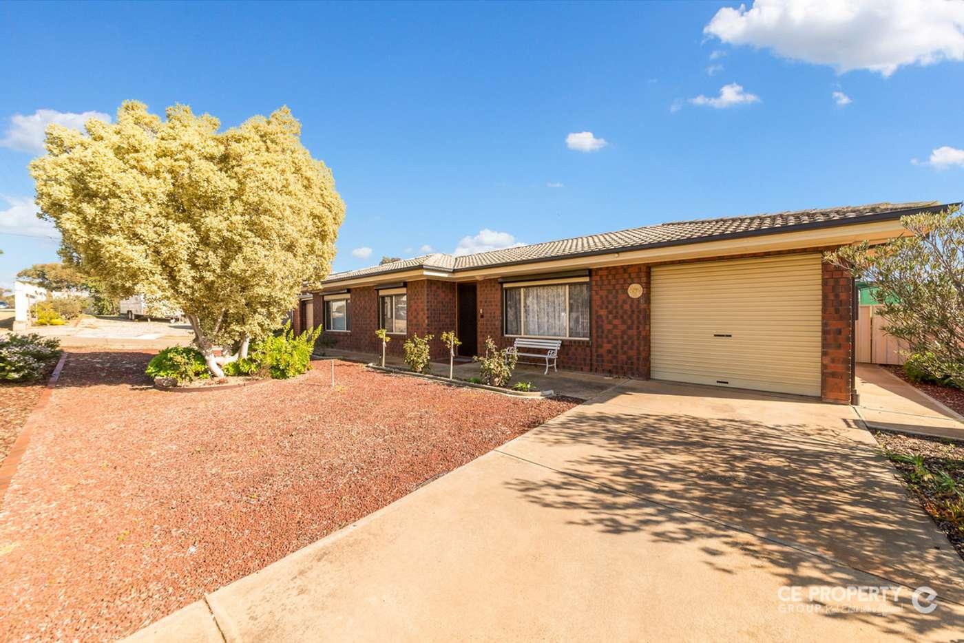 Main view of Homely house listing, 41 Berryman Avenue, Mannum SA 5238