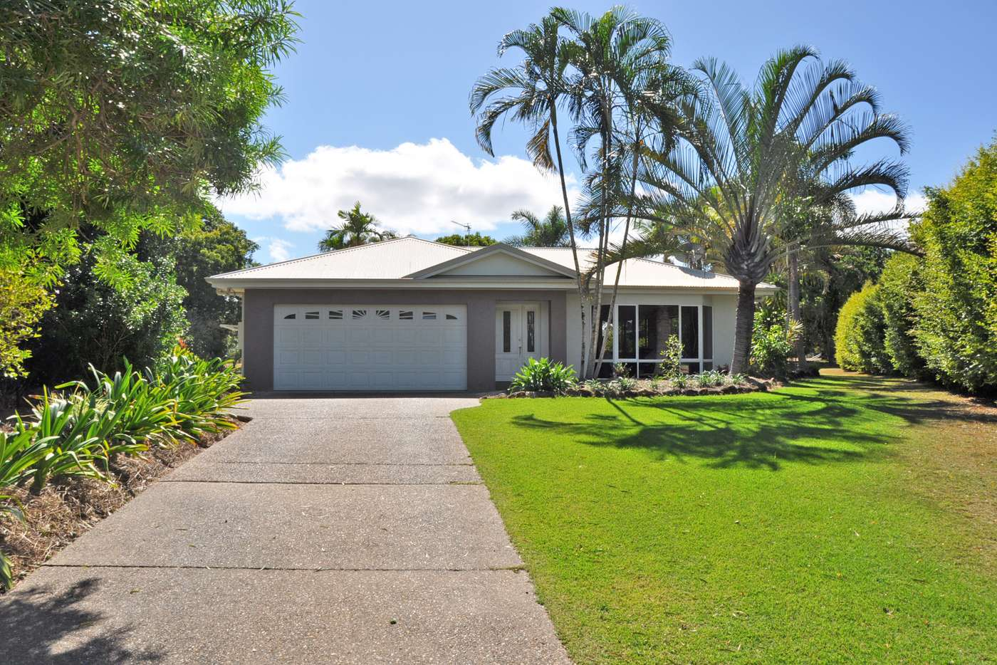 Main view of Homely house listing, 7 Debel Close, Mareeba QLD 4880