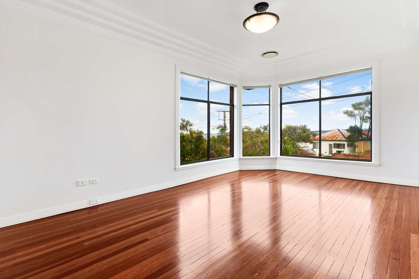 Main view of Homely house listing, 24 Vista Parade, Belmont NSW 2280