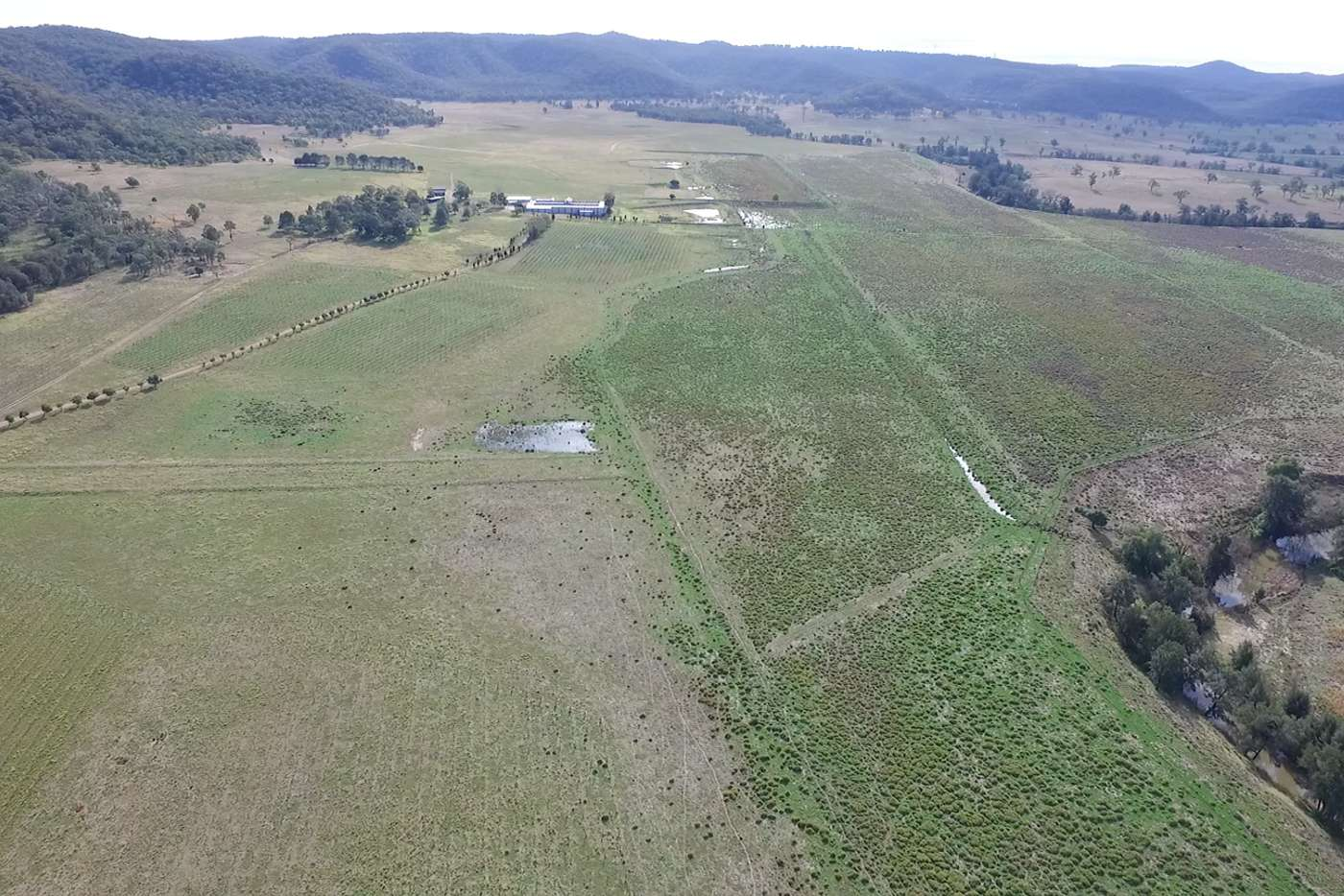Main view of Homely livestock listing, 700 Yarraman Road, Wybong NSW 2333