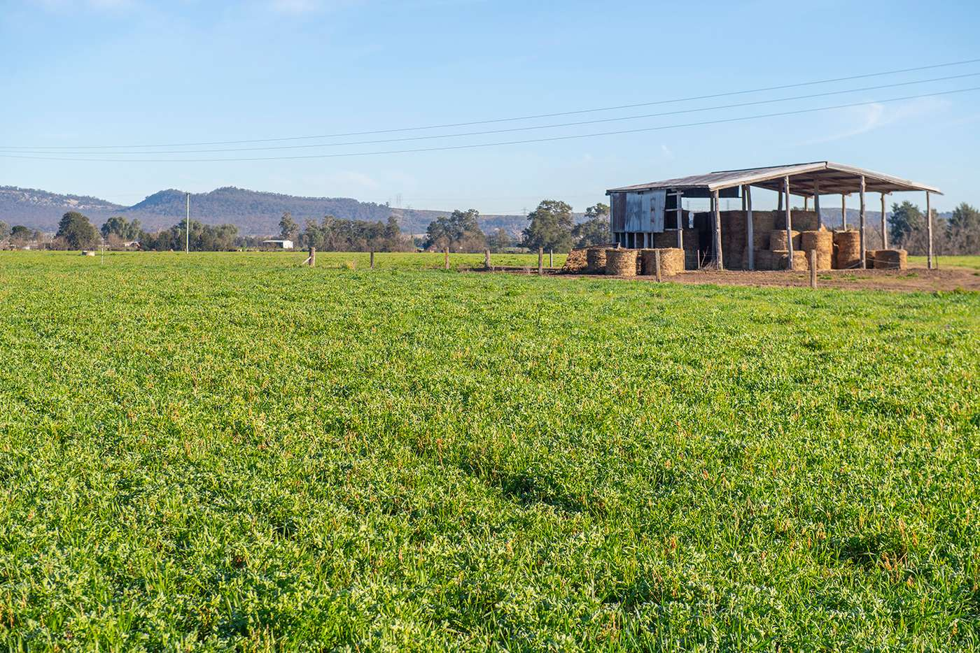 Sixth view of Homely cropping listing, 1828 Denman Road, Denman NSW 2328