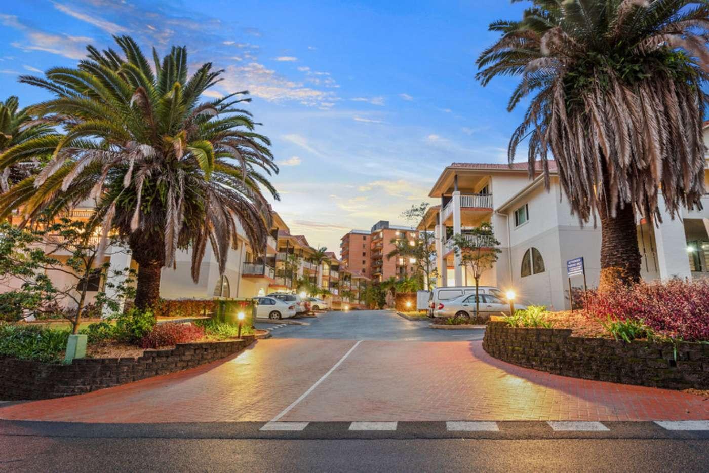 Main view of Homely unit listing, 3/88 L'Estrange Terrace, Kelvin Grove QLD 4059