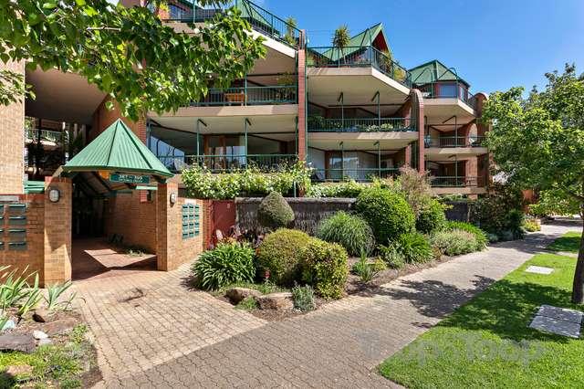 6/387-399 Halifax Street, Adelaide SA 5000
