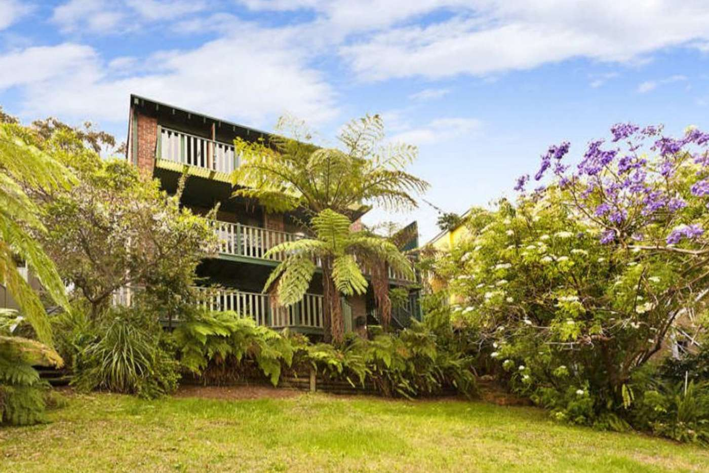 Main view of Homely house listing, 31 Beacon Avenue, Beacon Hill NSW 2100