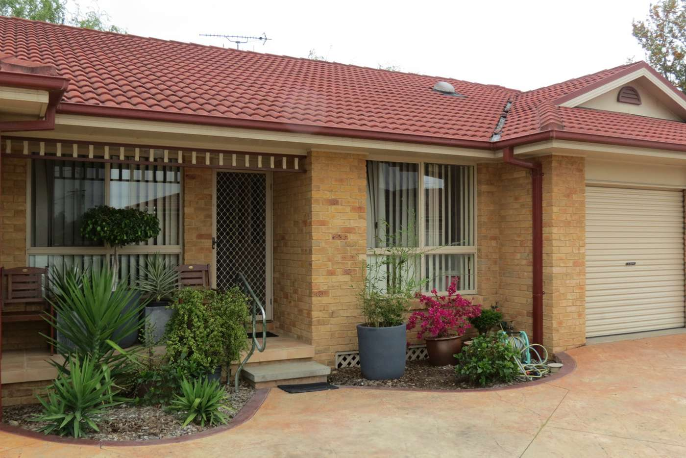 Main view of Homely semiDetached listing, 2/8 Sports Avenue, Cessnock NSW 2325