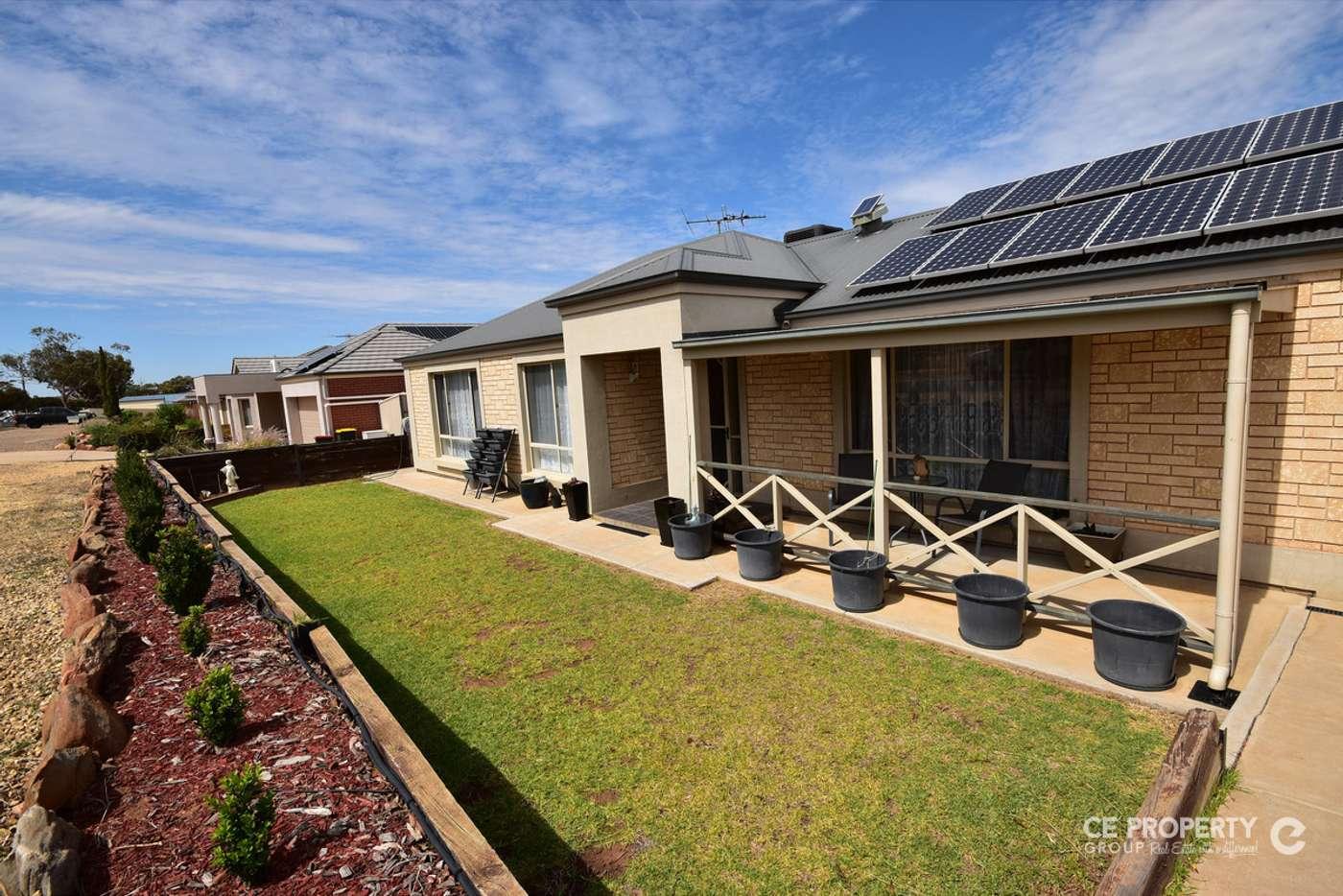 Main view of Homely house listing, 72 Sickerdick Street, Mannum SA 5238