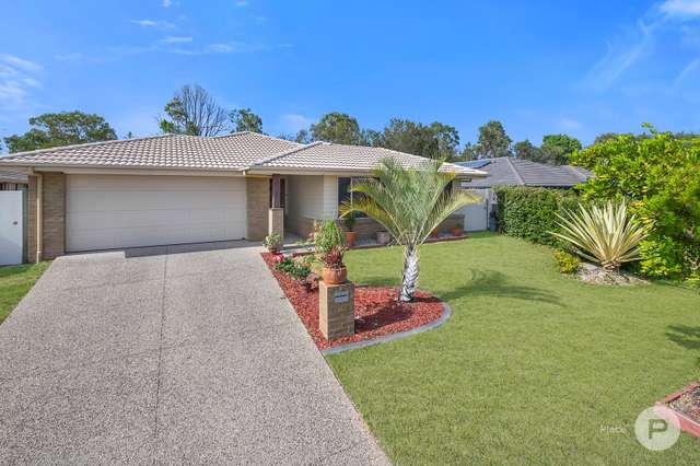 6 Cedarwood Street, Berrinba QLD 4117