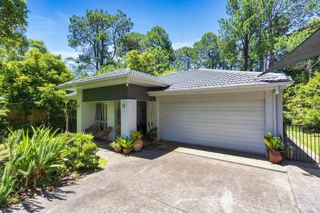 2299 Springbrook Road, Springbrook QLD 4213