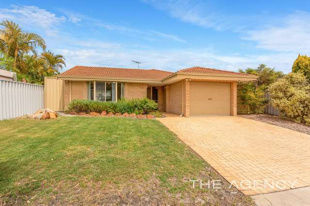 65 Bottlebrush Drive, Morley WA 6062
