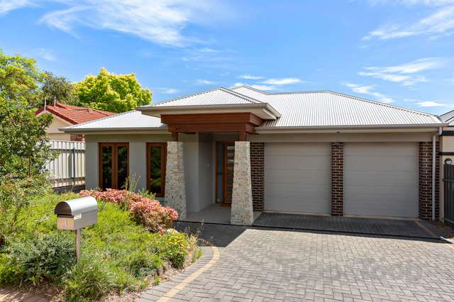 3 Maple Avenue, Magill SA 5072