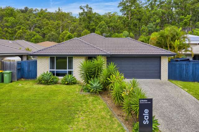20 Bellinger Key, Pacific Pines QLD 4211