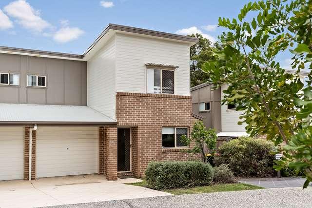 14/99 Bunya Road, Everton Hills QLD 4053