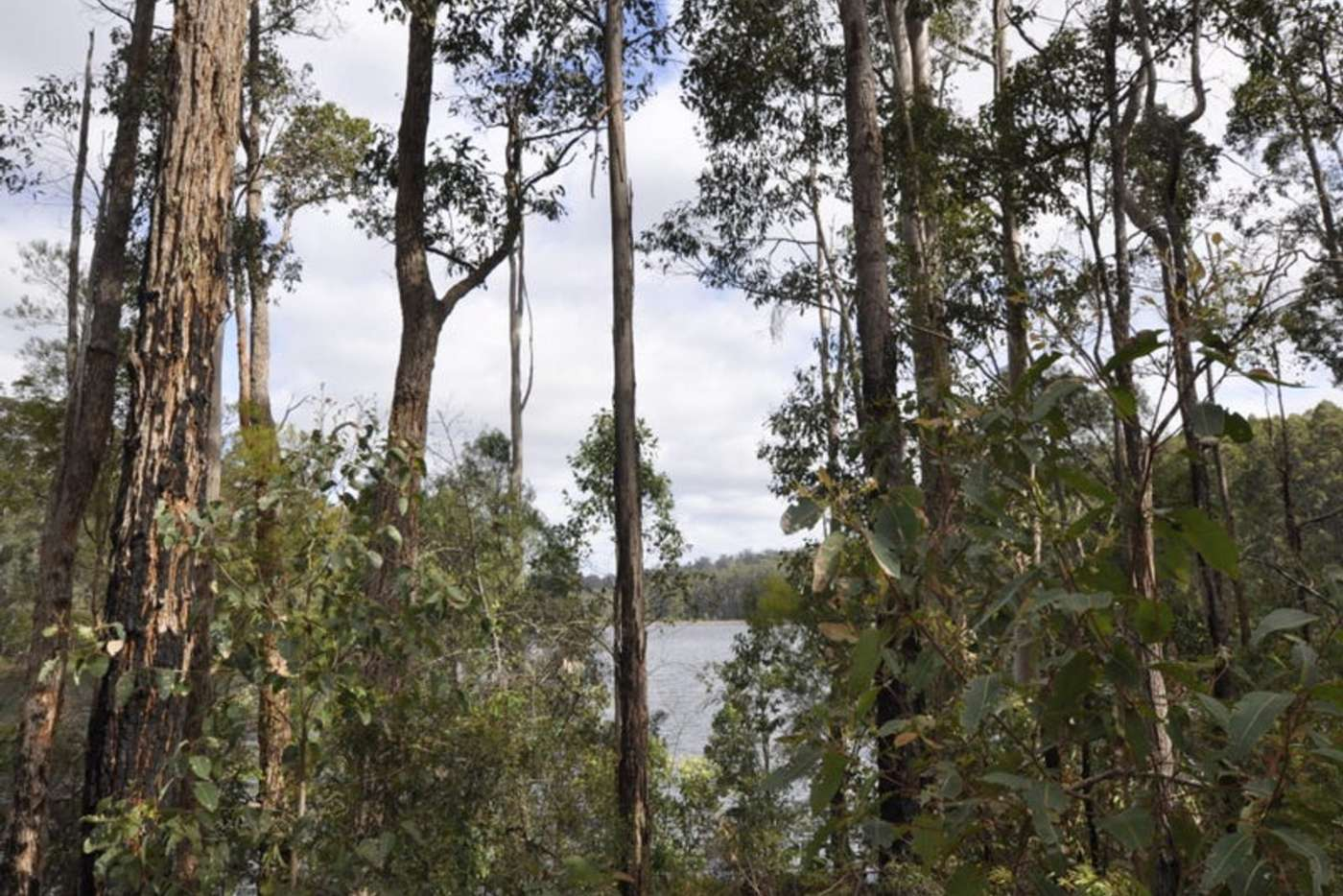 Seventh view of Homely residentialLand listing, Lot 166 Karri Lane, Quinninup WA 6258