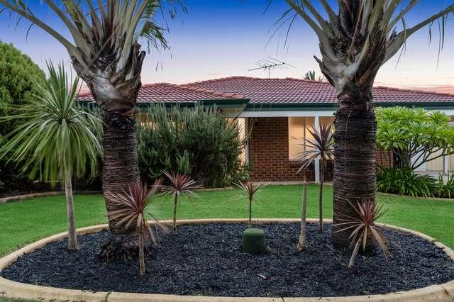 1 Coppice Court, Banksia Grove WA 6031