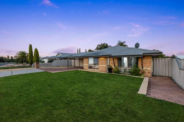 61 Celadon Loop, Banksia Grove WA 6031