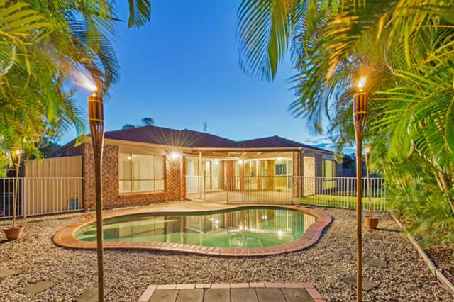 6 Woodbine Court, Parkwood QLD 4214