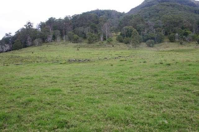 3182 Nerang Murwillumbah Road, Natural Bridge QLD 4211