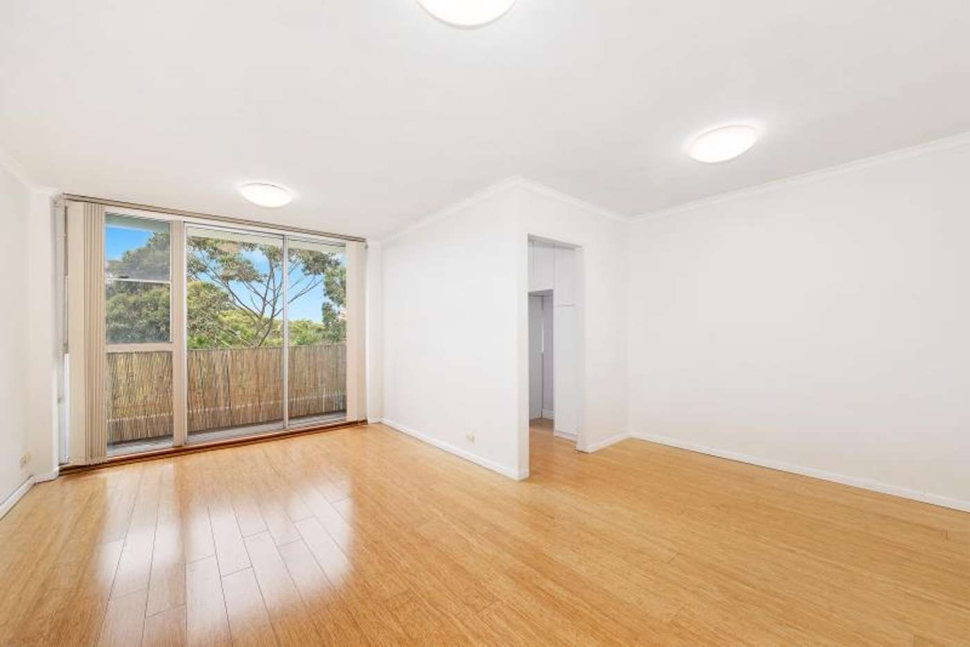 Main view of Homely apartment listing, 8C/14 Bligh Place, Randwick NSW 2031