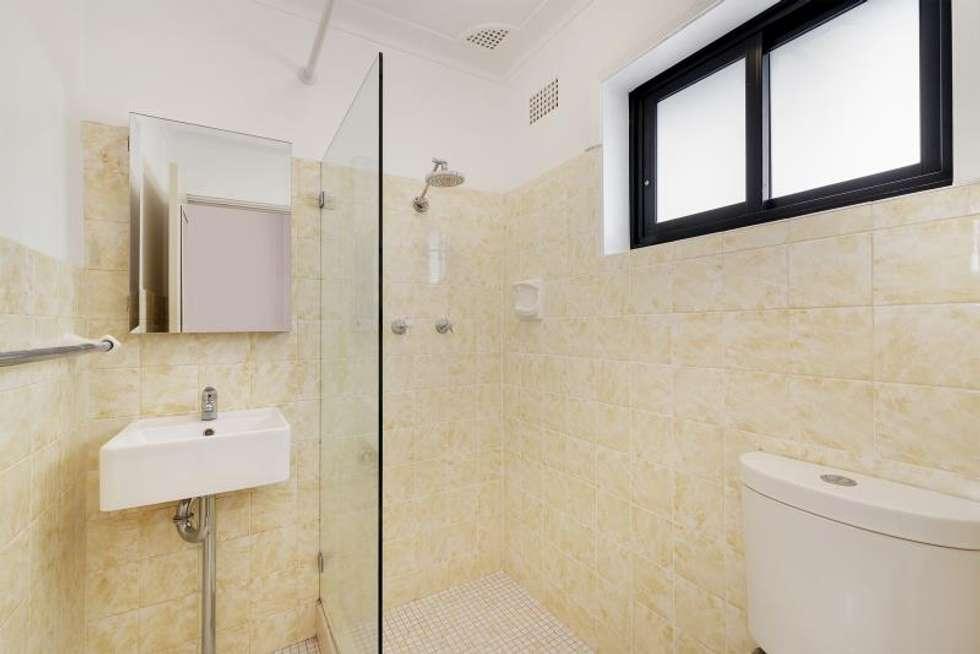 Third view of Homely studio listing, 8/2 Houston Road, Kensington NSW 2033