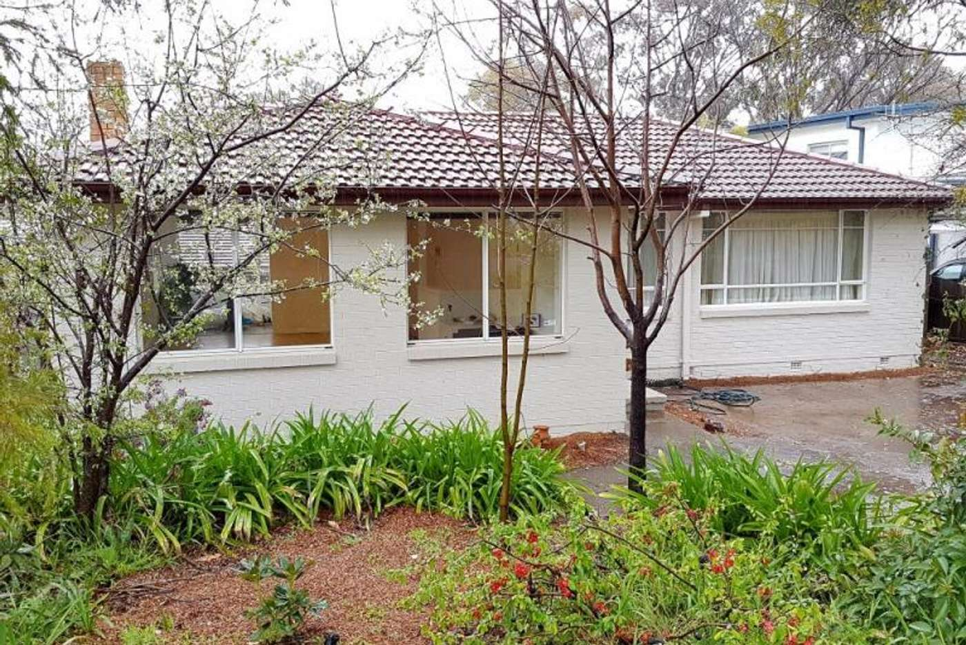 Main view of Homely house listing, 31 Port Arthur Street, Lyons ACT 2606