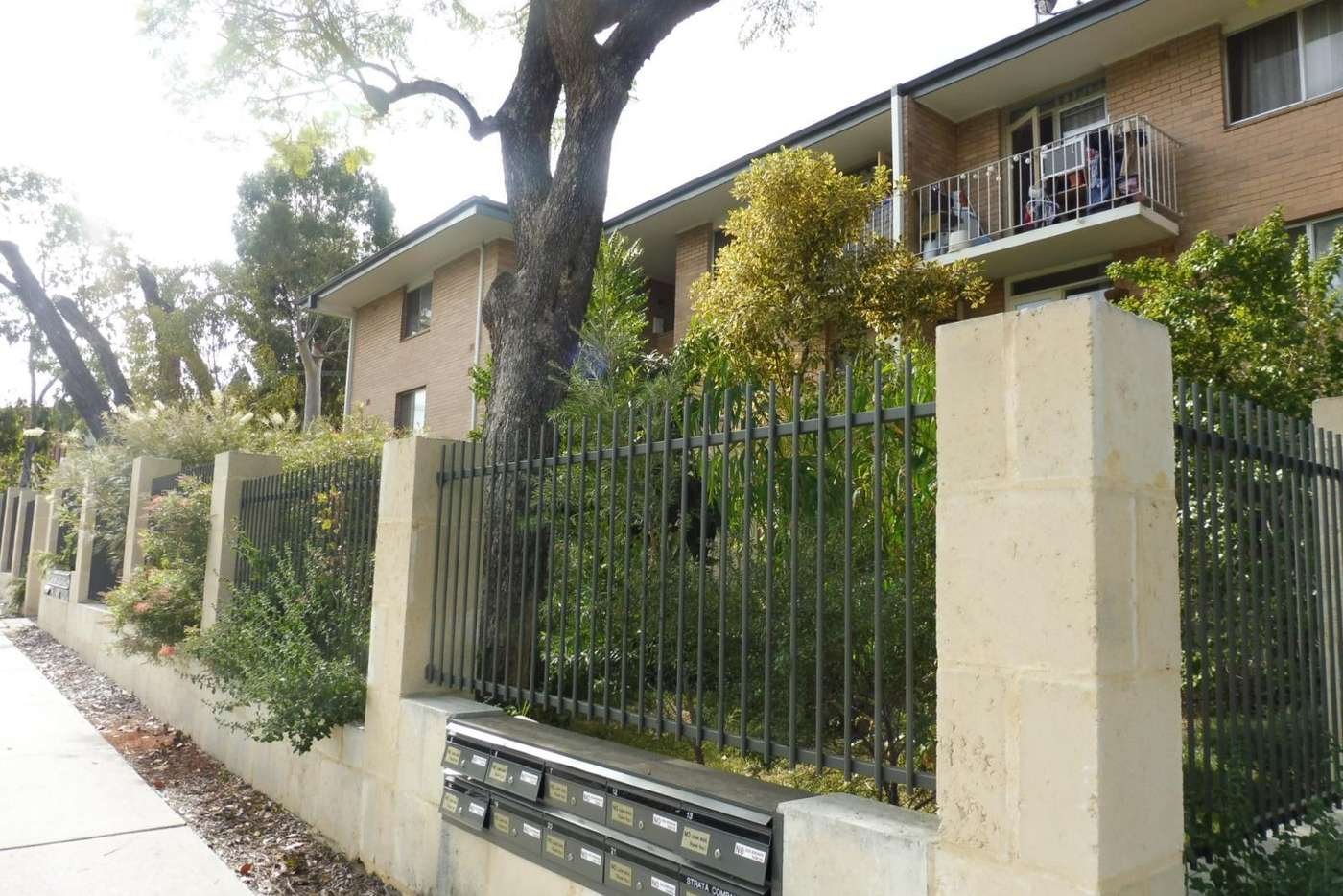 Main view of Homely house listing, 5/418 Beaufort Street, Highgate WA 6003