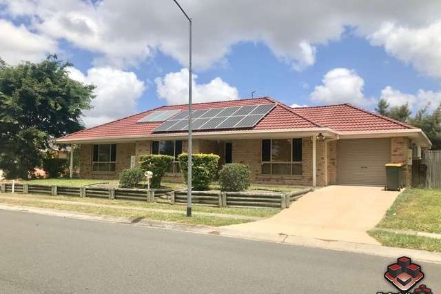 21 Abercorn Street, Runcorn QLD 4113