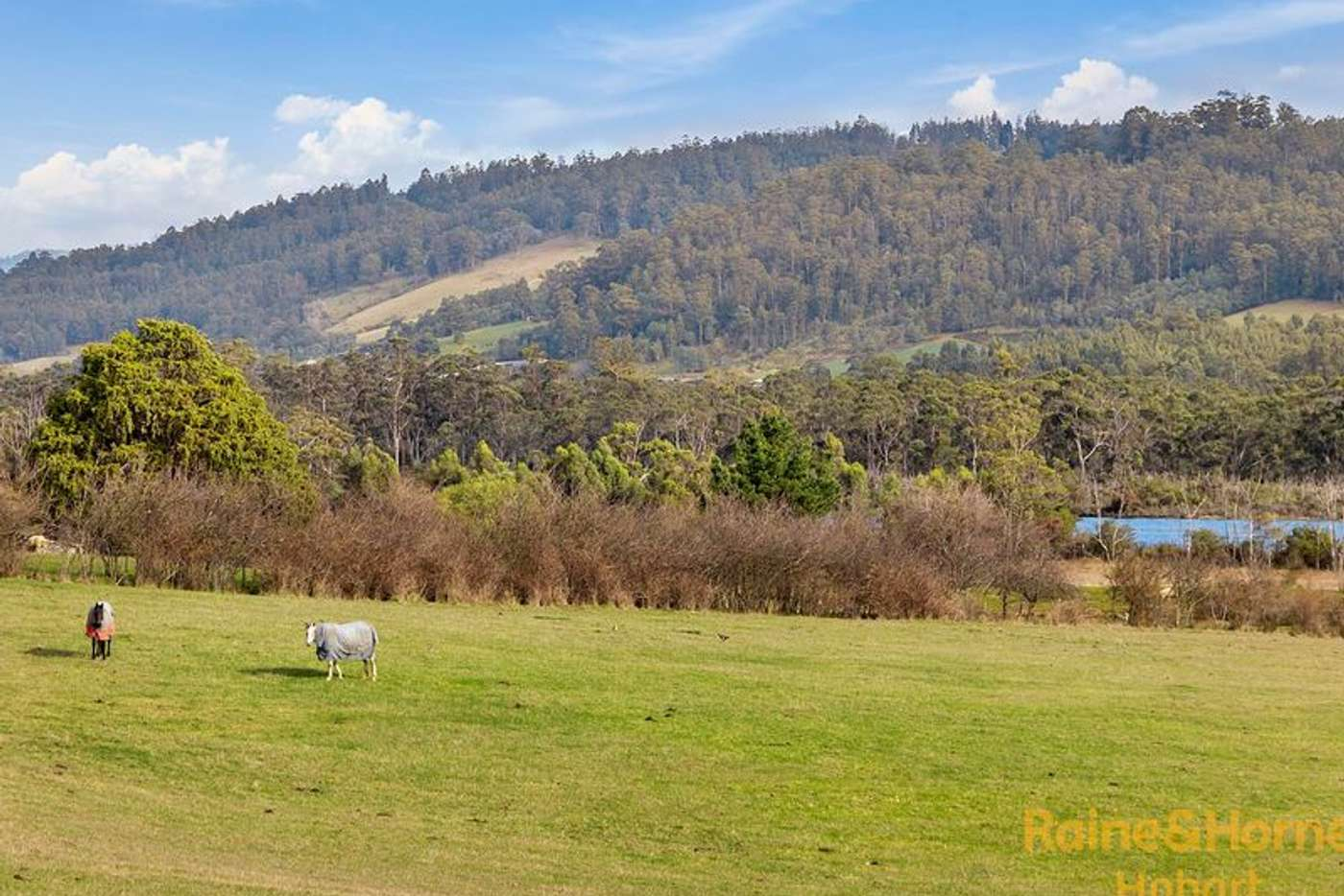 Main view of Homely residentialLand listing, 9001 Channel Highway, Huonville TAS 7109