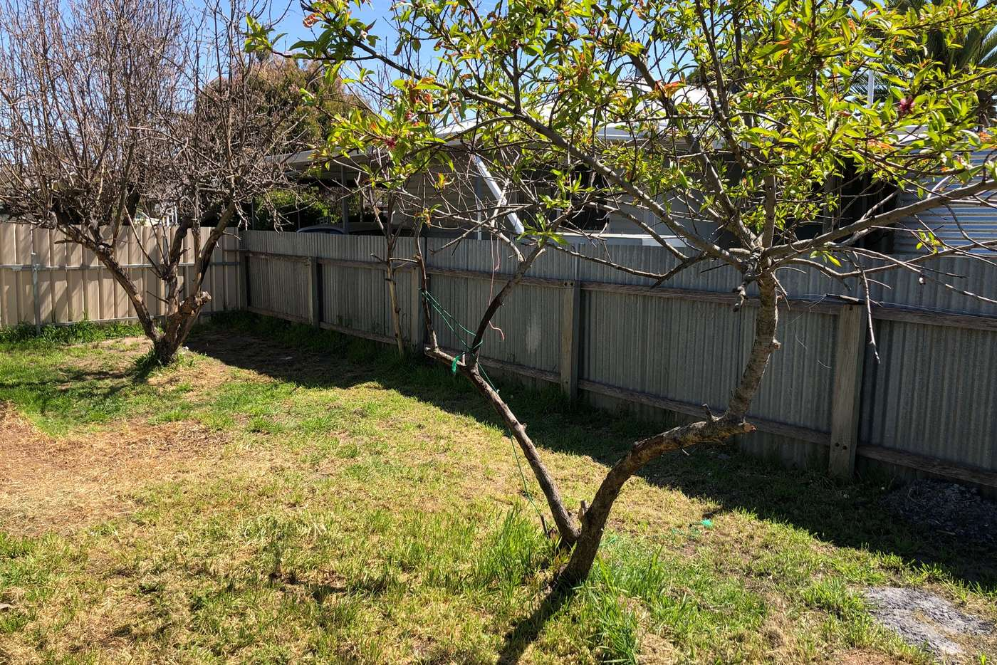 Seventh view of Homely house listing, 35 Peake Terrace, Coonalpyn SA 5265