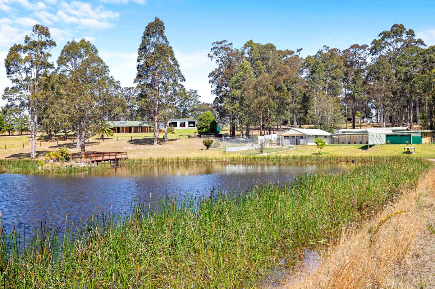Main view of Homely house listing, 1554 Princes Highway, Bimbimbie, NSW 2536