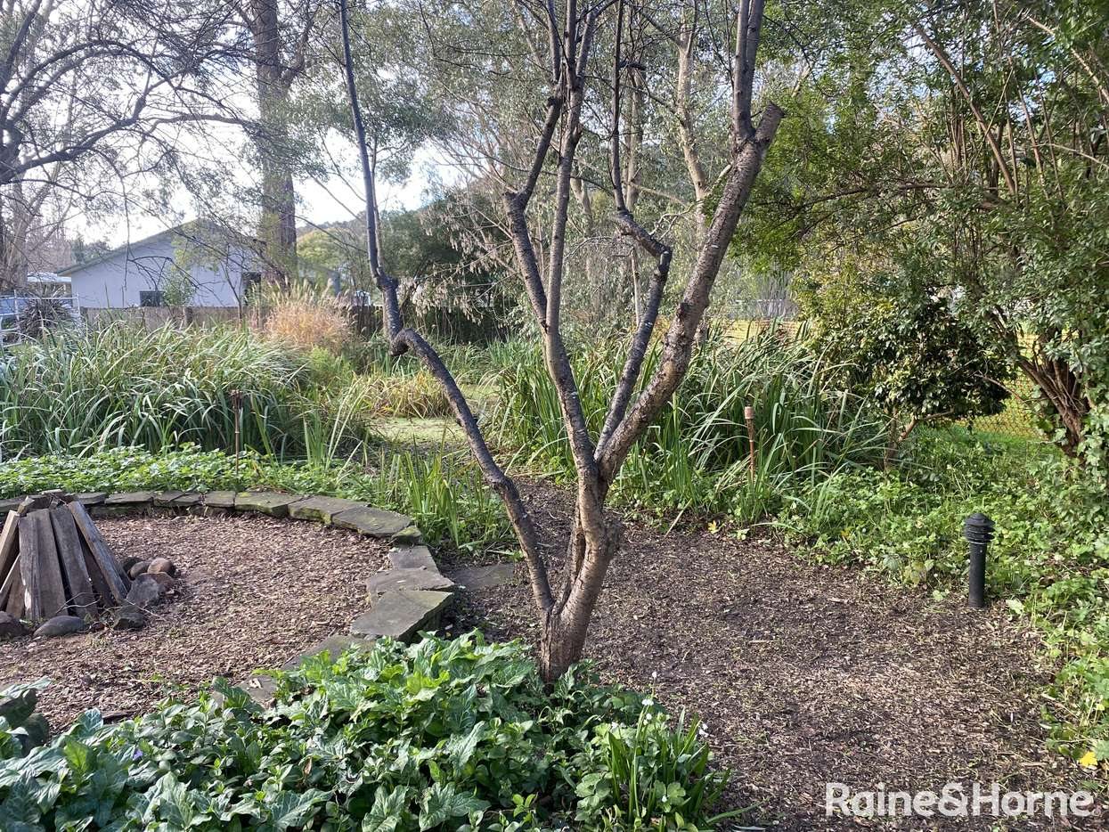 Main view of Homely house listing, 38 Bundaroo Street, Bowral, NSW 2576