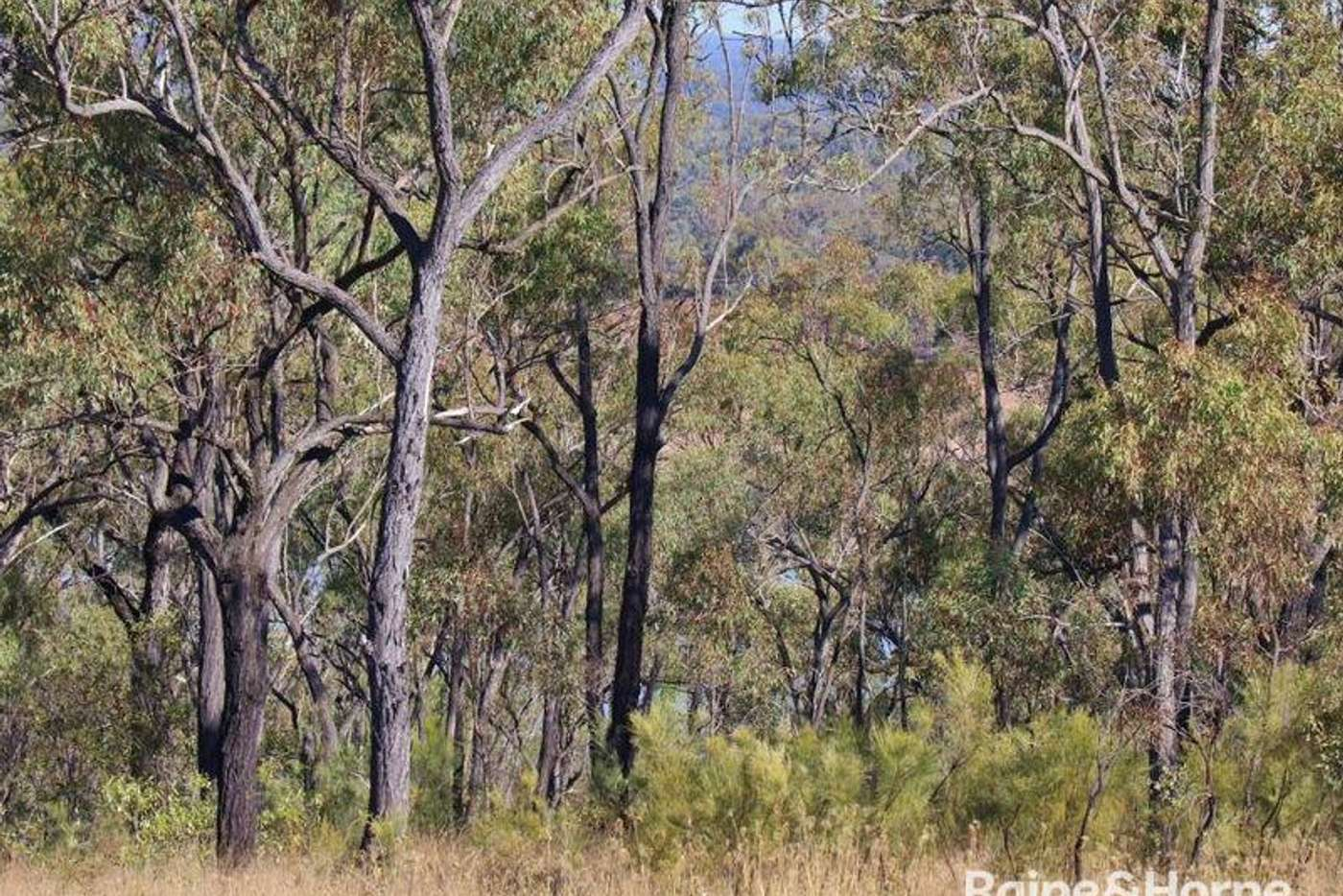 Seventh view of Homely residentialLand listing, 20 Boondooma Dam Lookout Road, Proston QLD 4613