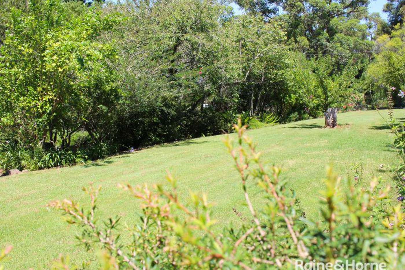Sixth view of Homely residentialLand listing, 35 Spinks Avenue, Lake Conjola NSW 2539