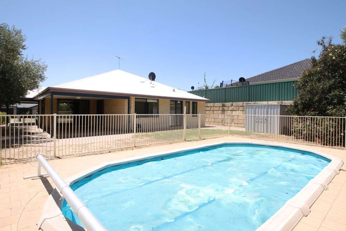 Main view of Homely house listing, 3 Astroloma Drive, Success WA 6164